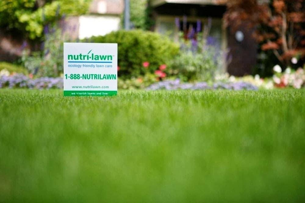 Nutri-Lawn Calgary